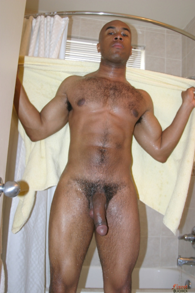 from Luke gay black stallions love the cock
